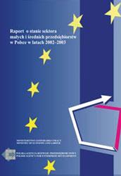 Raport o stanie sektora MSP w Polsce w latach 2002-2003